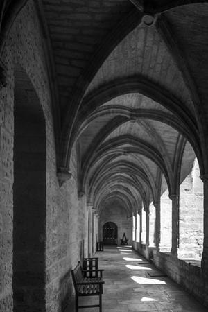 chartreuse Val de Bénédiction, cloister, cloister, Villeneuve lès Avignon,  by Klaus Neuner