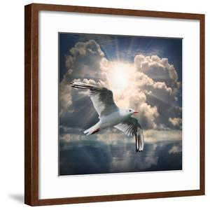The Seagull Flying Over A Sea Against A Dramatic Sky. Background From Nature by Kletr