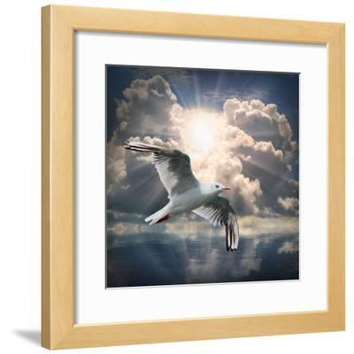 The Seagull Flying Over A Sea Against A Dramatic Sky. Background From Nature