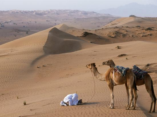 Kneeling to Pray in Desert, Holding Camels by Halters to Prevent Them Wandering Off Amongst Dunes-John Warburton-lee-Photographic Print