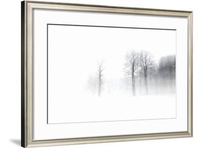 Knobby Oaks in the Blizzard, Abstract Study, Colours and Contrast Digitally Enhanced-Andreas Vitting-Framed Photographic Print