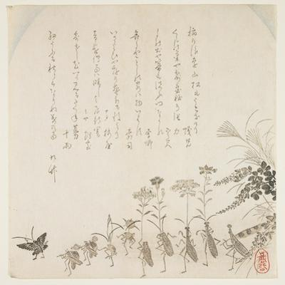 Autumn Flowers and Singing Insects, C.1854-59