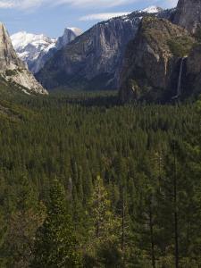 Bridal Veil Falls and Half Dome Peak in Yosemite Valley, Yosemite National Park, California, USA by Kober Christian