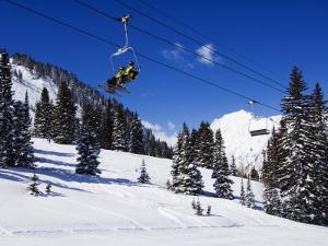 Chair Lift Carries Skiers at Alta, Alta Ski Resort, Salt Lake City, Utah, USA by Kober Christian