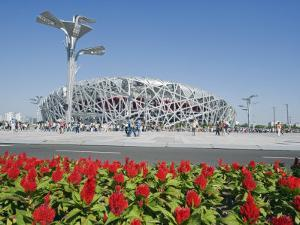 Flowers and the Birds Nest National Stadium in the Olympic Green, Beijing, China by Kober Christian