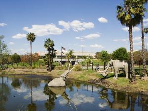 Model Elephants in La Brea Tar Pits, Hollywood, Los Angeles, California, USA by Kober Christian