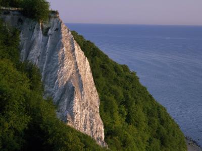 Koenigstuhl Cliff Facing the Sea on Ruegen Island-Norbert Rosing-Photographic Print