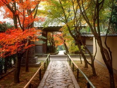 Koetsuji Temple in Autumn--Photographic Print