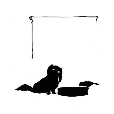Koko the Pekinese Dog with Jack Sparrow-Mary Baker-Giclee Print