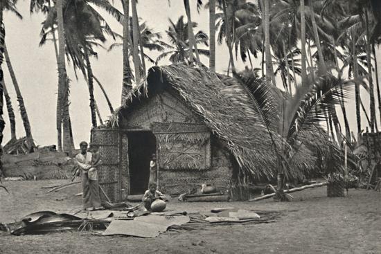 Kokospalmen und Einngeborenenhutte aus Kokosblattern-Unknown-Photographic Print