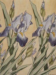 Iris by Koloman Moser