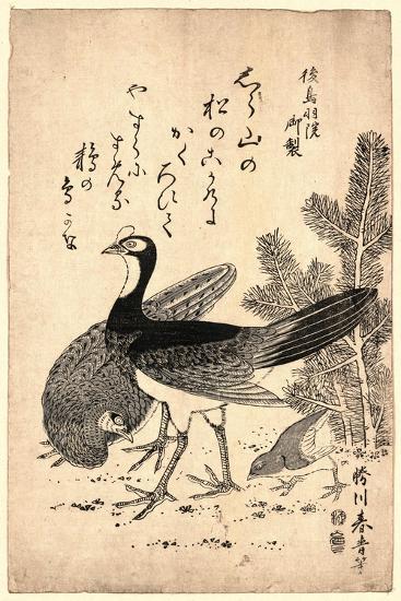 Komatsu Ni Yamadori, Wildfowl and Pine. Print Shows Wild Birds and a Young Pine Tree--Giclee Print