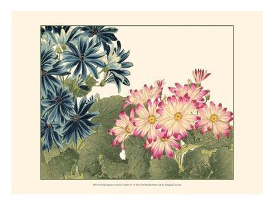 Small Japanese Flower Garden IV