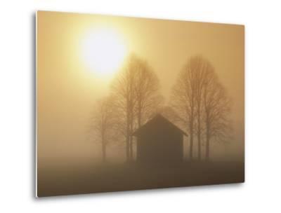Barn, Trees and Sun Shining Through Morning Mist, Bavaria, Germany