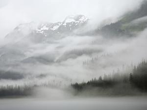 Clouds and Mist over Forest, Admiralty Island National Monument, Inside Passage, Alaska by Konrad Wothe