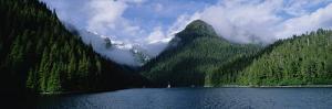 Conifer-Covered Coastline of Warm Springs, Baranof Island, Inside Passage, Alaska by Konrad Wothe