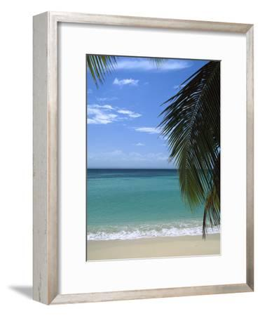 Palm Fronds Frame Bacardi Beach and Lagoon, Dominican Republic, Caribbean