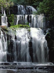 Purakaunui Falls Cascading in Tropical Rainforest, Catlins, South Island, New Zealand by Konrad Wothe