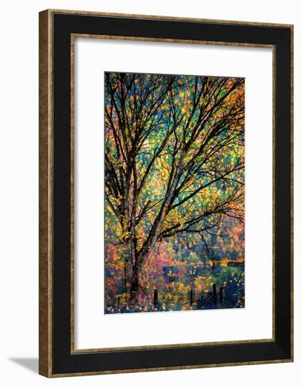 Kootenay Fall 3-Ursula Abresch-Framed Photographic Print