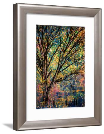 Kootenay Fall 3-Ursula Abresch-Framed Photographic Print