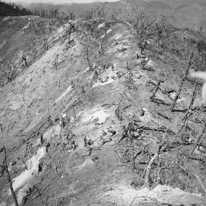 Korean War: Bloody Ridge