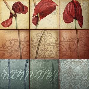 Harmony by Kory Fluckiger
