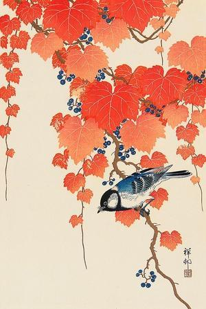 Bird and Red Ivy