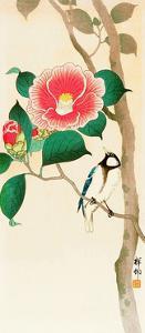 Bird on Camellia by Koson Ohara