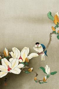 Blue Bird and Magnolia by Koson Ohara