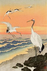 Cranes on Seashore by Koson Ohara
