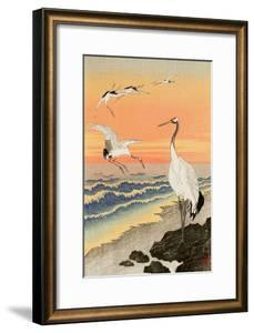 Cranes on Seashore by Koson Ohara