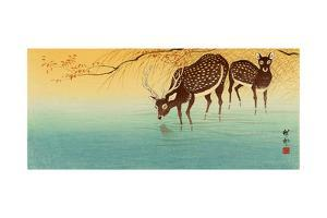 Deer in Shallow Water by Koson Ohara