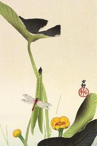 Dragonfly and Lotus by Koson Ohara