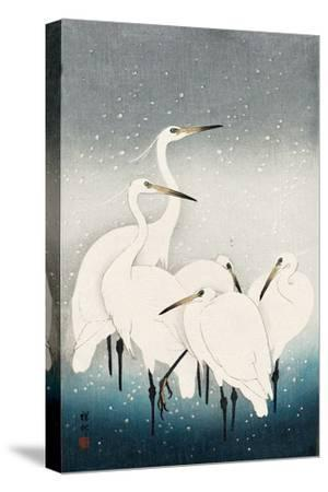 Five White Herons Standing in Water; Snow Falling