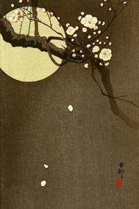 Flowering Plum and Moon by Koson Ohara