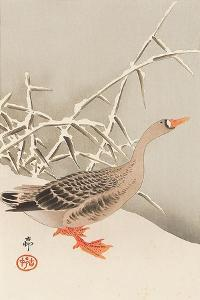 Goose and Reeds by Koson Ohara