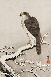 Hawk on Snow-Covered Branch by Koson Ohara