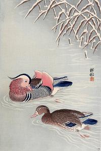 Mandarin Ducks in Snow by Koson Ohara