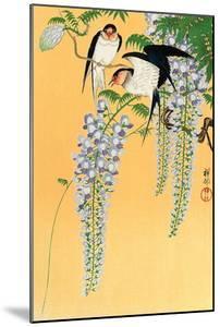 Swallows and Wisteria by Koson Ohara