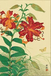 Tiger Lilies and Butterfly by Koson Ohara