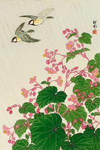 Two Birds and Begonia in Rain by Koson Ohara