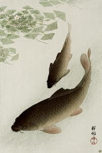Two Carp and Blooming Water Plants by Koson Ohara