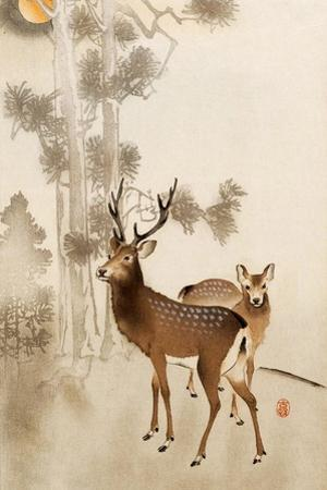 Two Deer, Pine and Moon