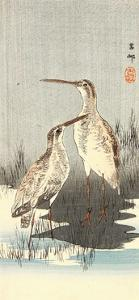 Two Snipes by Koson Ohara