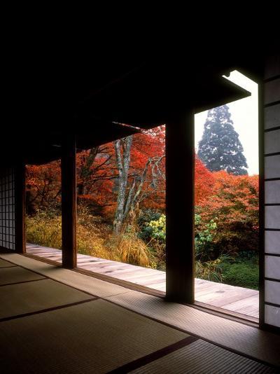 Kozanji Temple--Photographic Print