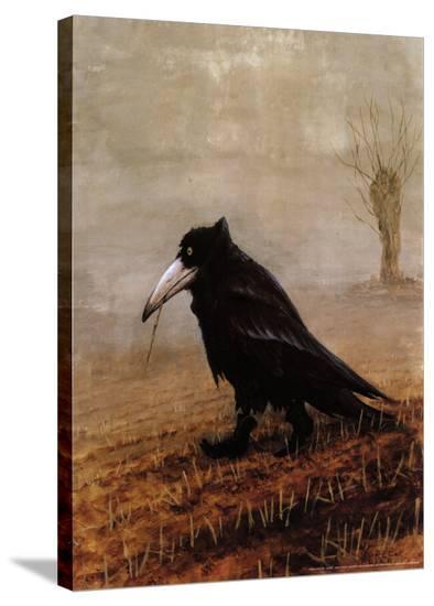 Krahe-Rudi Hurzlmeier-Stretched Canvas Print