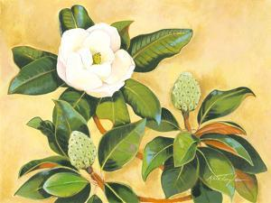 Southern Magnolia II by Kris Taylor