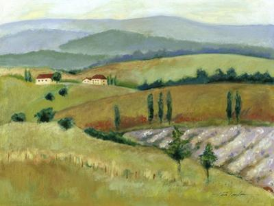 Tuscany Afternoon II
