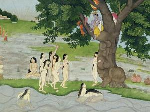 Krishna Steals the Clothes of Gopies, from the Bhagavata Purana, Kangra, Himachal Pradesh, 1780