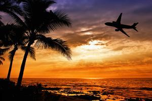 Sunset with Palm Tree and Airplane Silhouettes by krisrobin